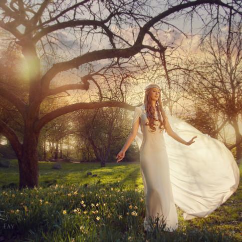 Fotoshooting Fantasy Shooting Elfen Galadriel