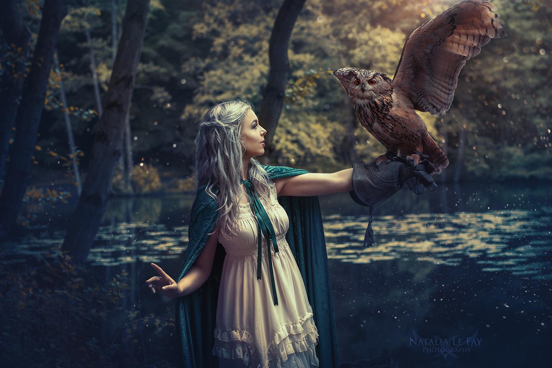 Eulen Greifvogel Eulenshooting Fotografie Shooting Tierfotografie Fantasyfotografie Fantasy Shooting Greifvogel-Fotoshooting - Tipps zum Umgang mit Vögeln