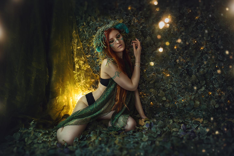 Wald Foto-Set